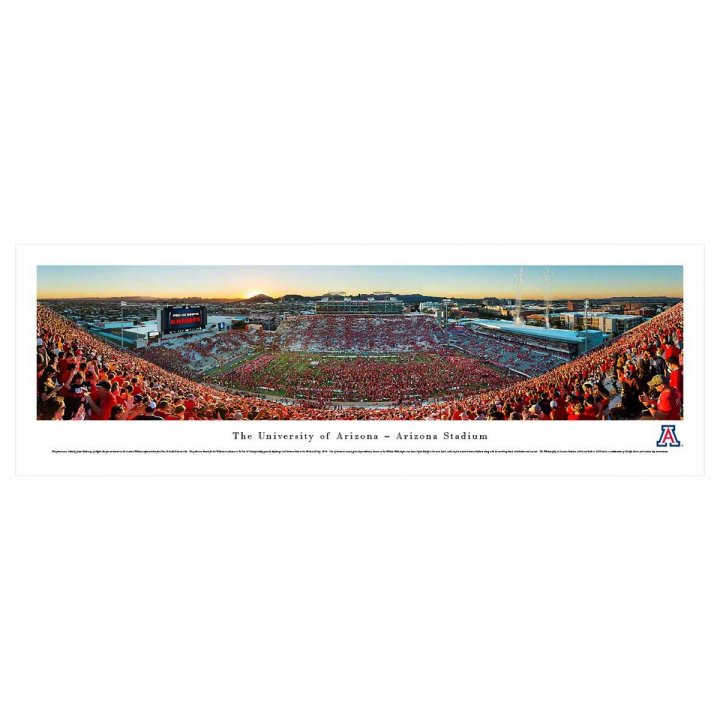 Arizona Wildcats Stripe Unframed Panorama
