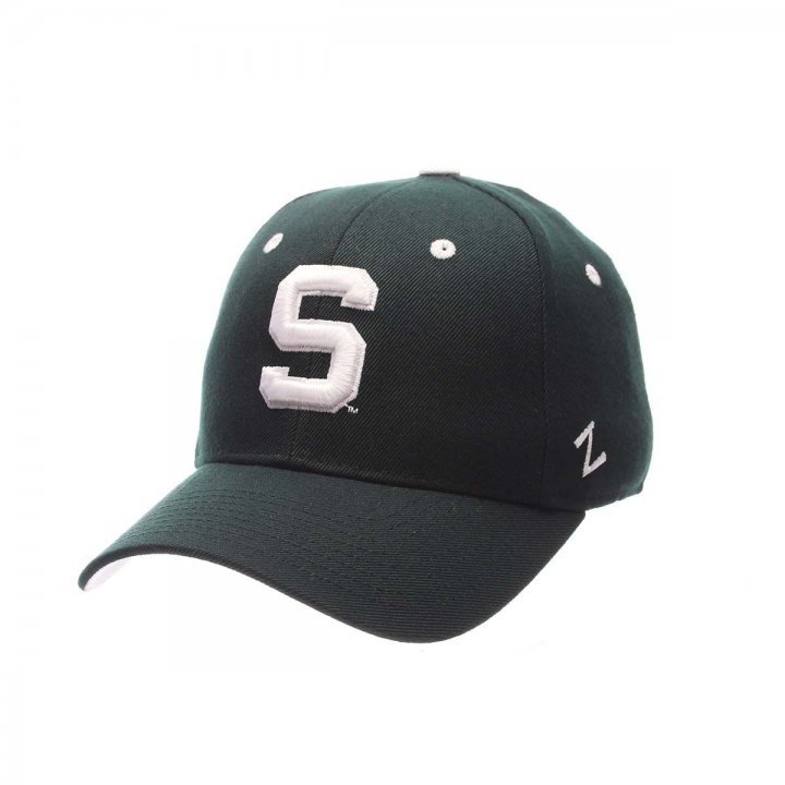 Michigan State Spartans Zephyr NCAA Dh Fitted Hat (Green)