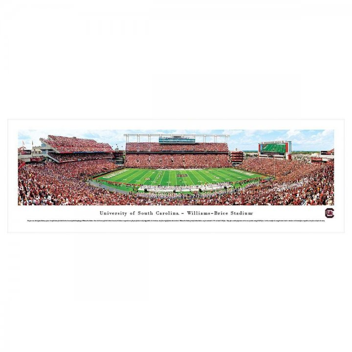 South Carolina Gamecocks 50 Yard Line Unframed Panorama
