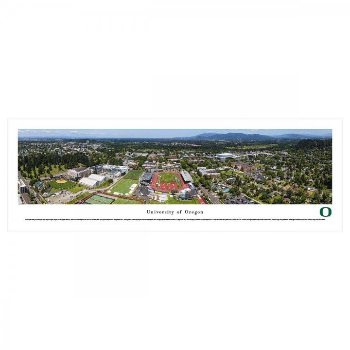 Oregon Ducks Aerial Unframed Panorama