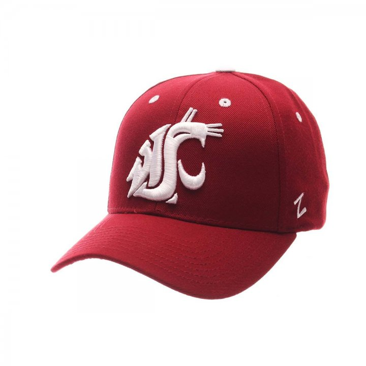 Washington State Cougars NCAA Competitor 2430 (Maroon)