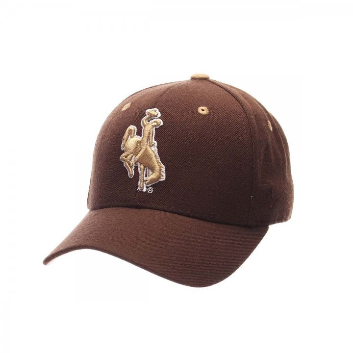 Wyoming Cowboys DHS Fitted Hat (Brown)