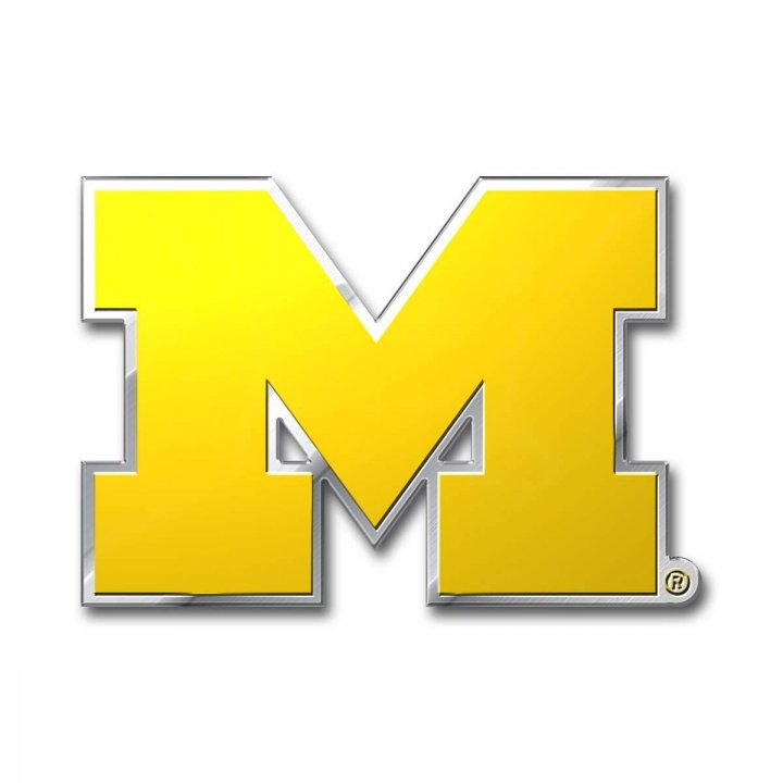 Michigan Wolverines Color Emblem
