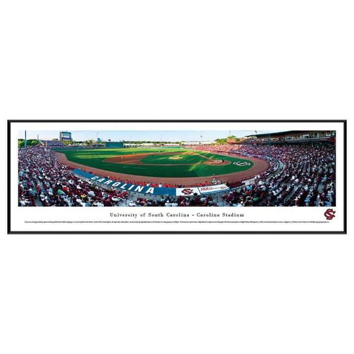 South Carolina Gamecocks Standard Frame