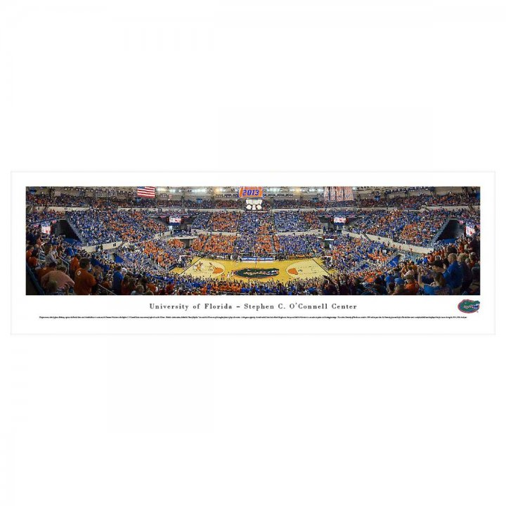 Florida Gators Unframed Panorama