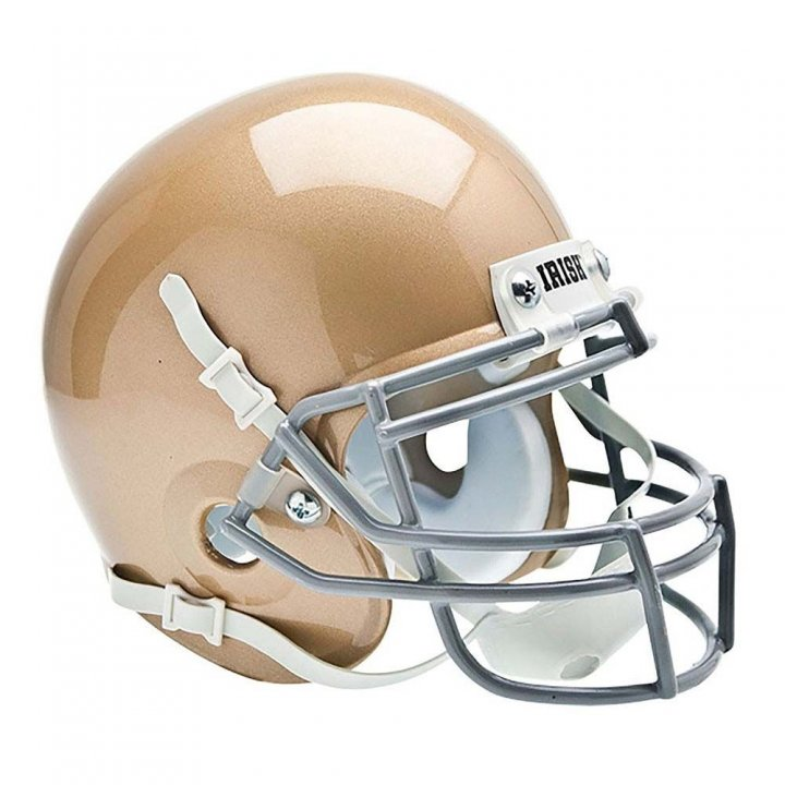 Notre Dame Fighting Irish Official Team Mini Football Helmet