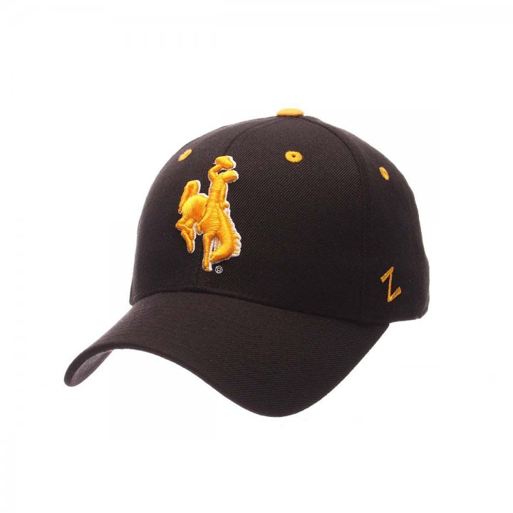 Wyoming Cowboys Zephyr NCAA Dhs Fitted Hat (Black)