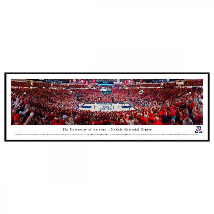 Arizona Wildcats Standard Frame