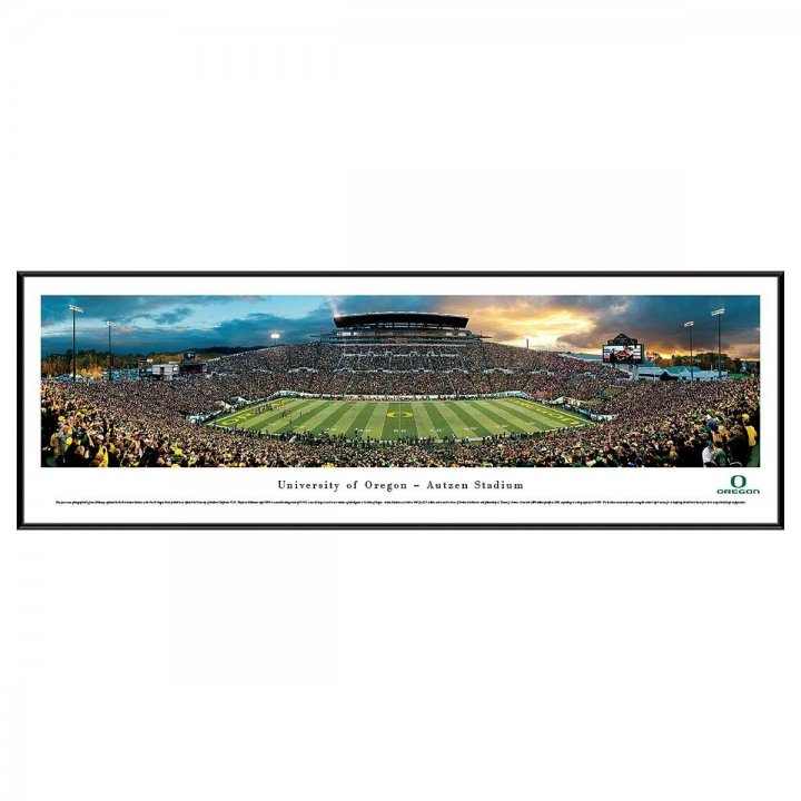 Oregon Ducks Standard Frame
