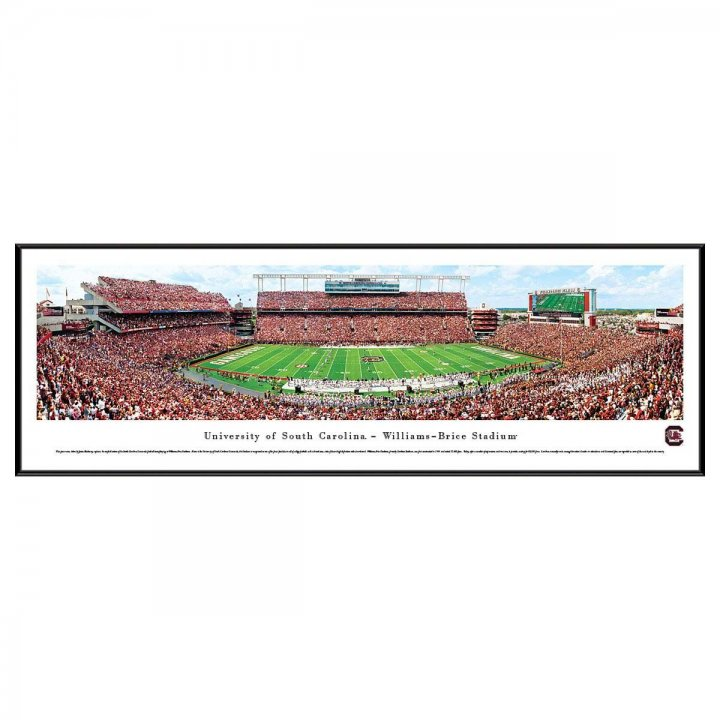 South Carolina Gamecocks 50 Yard Line Standard Frame