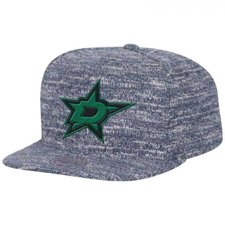 Mitchell & Ness Dallas Stars Grey Noise Snapback Hat (Gray)