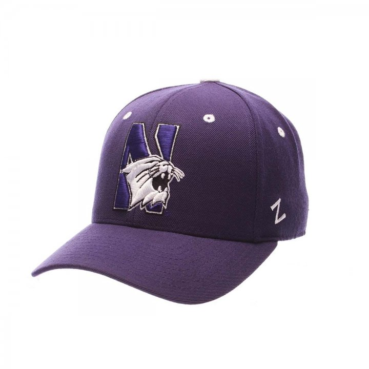 Northwestern Wildcats Zephyr NCAA Dhs Fitted Hat (Purple)
